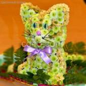 Котенок с зелеными глазами