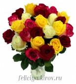 Роза Эквадор  60 см., микс