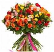 Роза кустовая 35 шт.